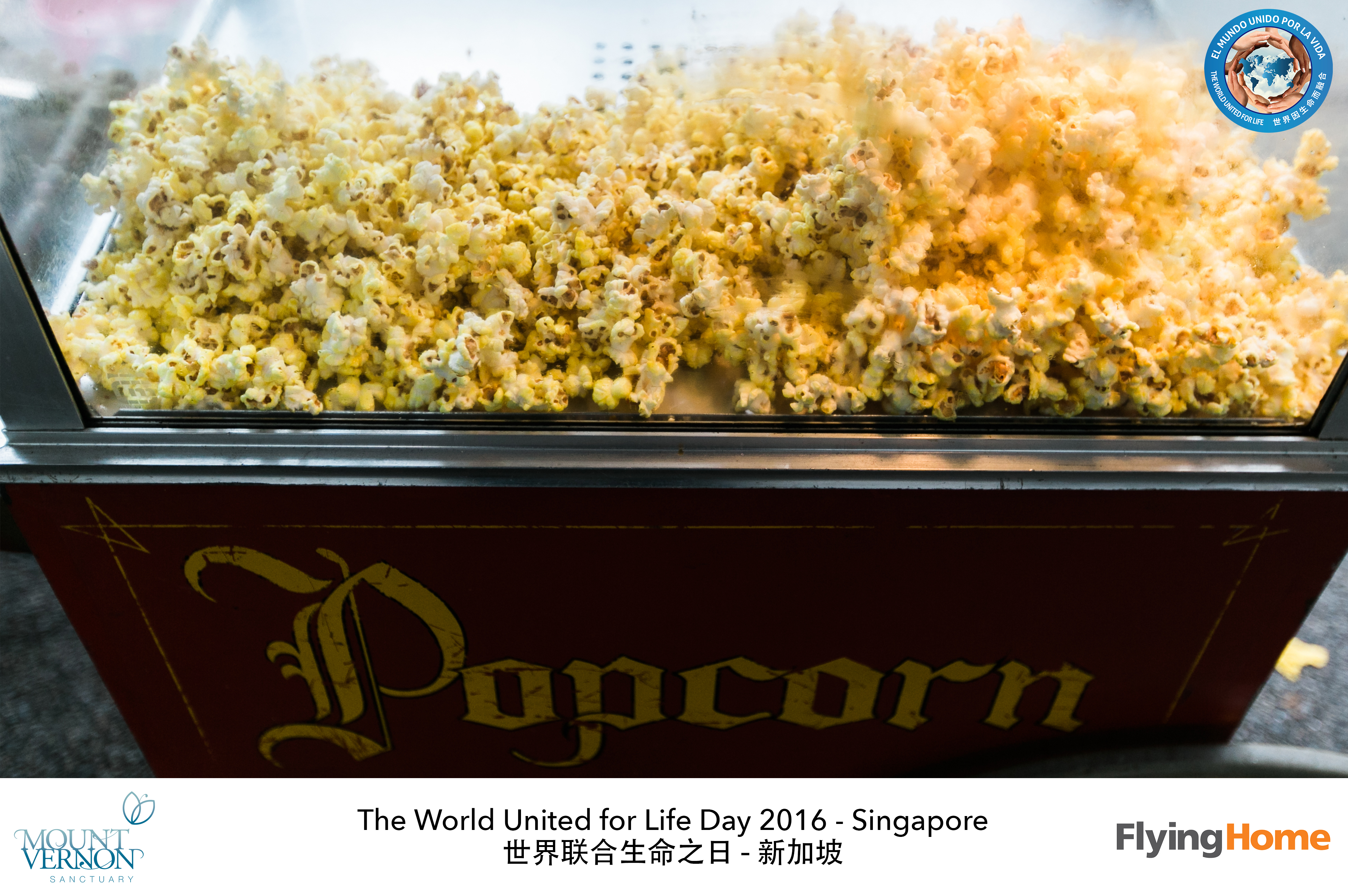 The World United For Life Day 2016 06