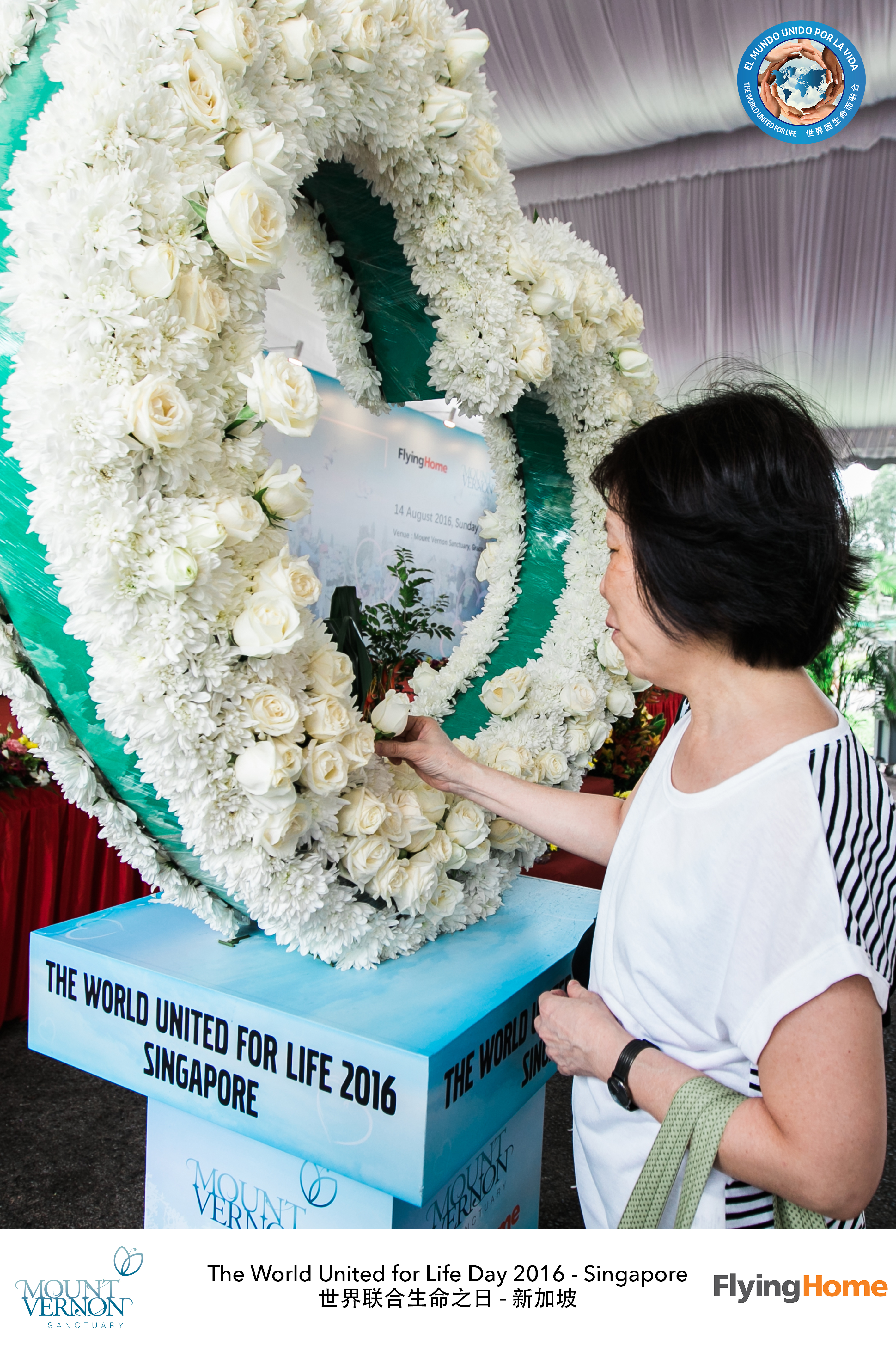 The World United For Life Day 2016 45