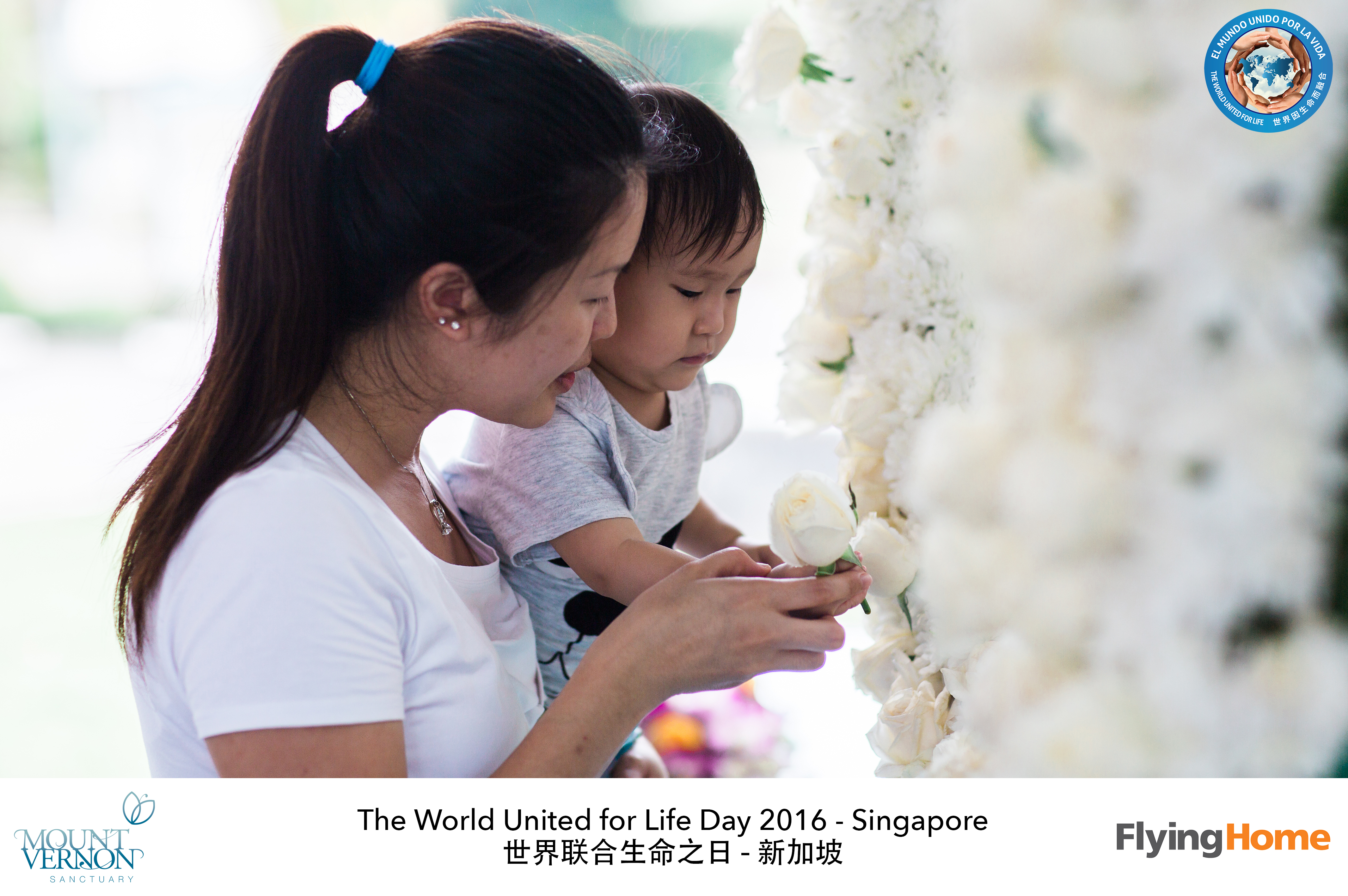 The World United For Life Day 2016 47
