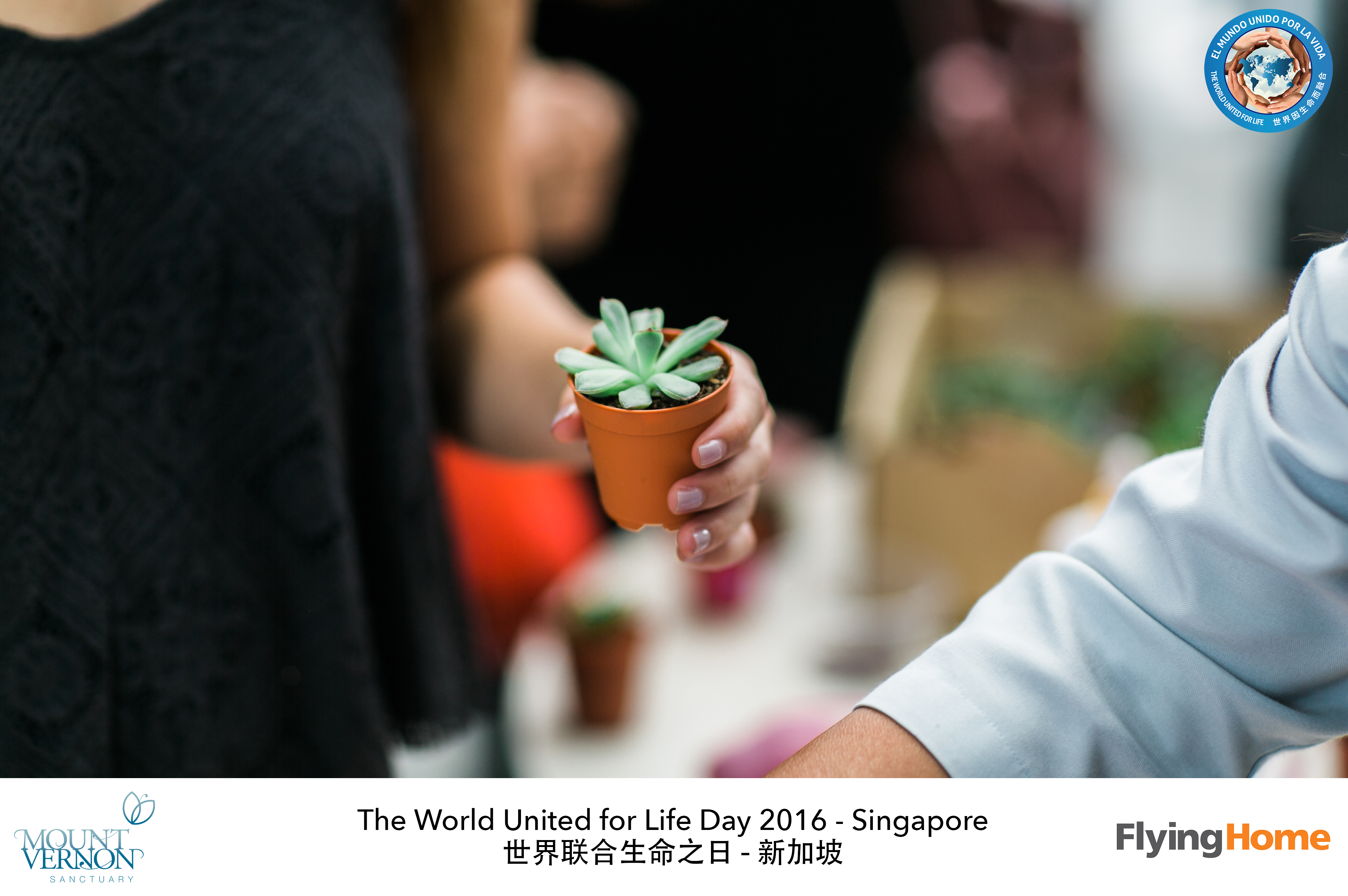 The World United For Life Day 2016 68